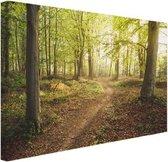 Een weg door het bos Canvas 60x40 cm - Foto print op Canvas schilderij (Wanddecoratie woonkamer / slaapkamer)