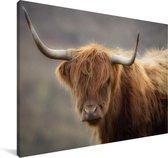 Close up van een Schotse hooglander Canvas 120x80 cm - Foto print op Canvas schilderij (Wanddecoratie woonkamer / slaapkamer) / Wilde dieren Canvas Schilderijen