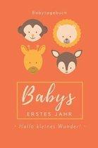 Babytagebuch Babys Erstes Jahr Hallo Kleines Wunder