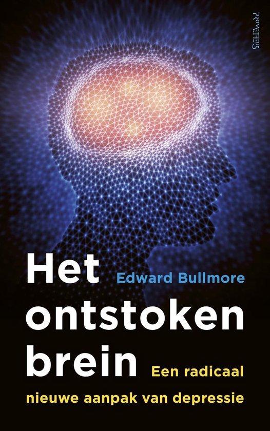 Het ontstoken brein - Edward Bullmore pdf epub