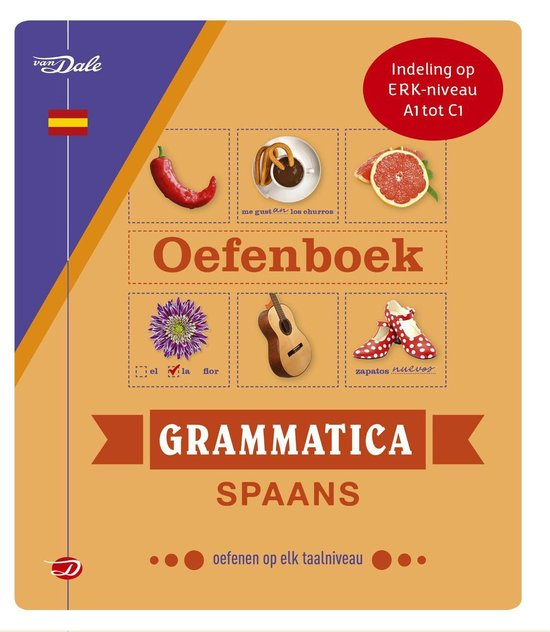 Van Dale oefenboek grammatica Spaans - Christina Irún Chavarría  