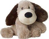 Magnetronbeer Hond Gary