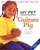 My Pet Guinea Pig