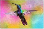 Graphic Message - Schilderij Print op Canvas - Kolibrie - Vogel - Woonkamer