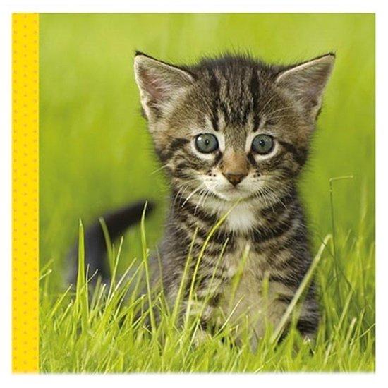 Snoezige dieren knisperboekje / Livre frou-frou adorables animaux - none |