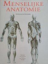 Menselijke Anatomie Voor Kunstenaars