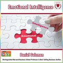 Emotional Intelligence: What Makes a Leader?