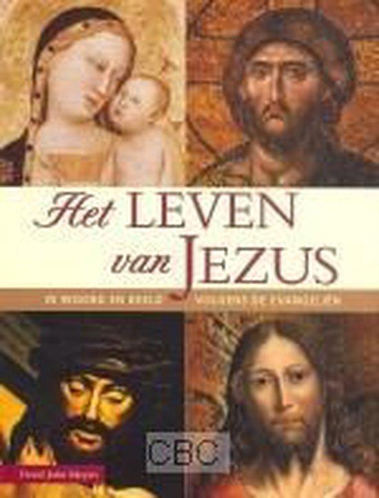 Het Leven Van Jezus - David John Meyers |
