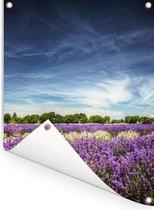 Lavendels in de natuur Tuinposter 60x80 cm - Tuindoek / Buitencanvas / Schilderijen voor buiten (tuin decoratie)