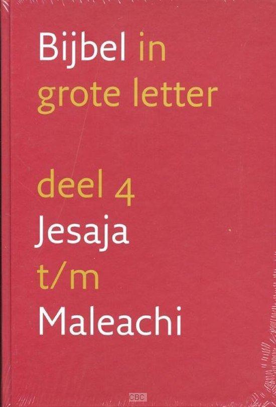 Bijbel In Grote Letter - Diverse auteurs |