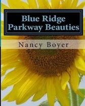 Blue Ridge Parkway Beauties