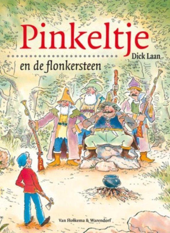 Pinkeltje 9 - Pinkeltje en de flonkersteen - Suzanne Braam |