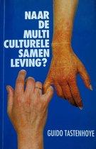 Naar de multiculturele samenleving?