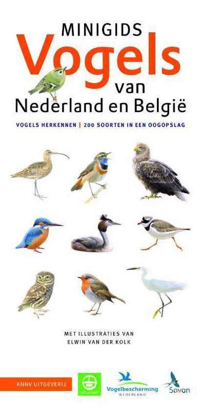 Boek cover Minigids 1 -   Minigids Vogels van Nederland en België van Jip Louwe Kooijmans (Paperback)