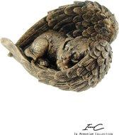Urn - Hond - Overleden - Bronze  -23x15.5 cm - 250cc