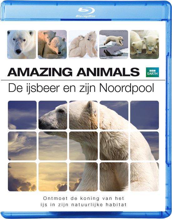 Cover van de film 'Amazing Animals - De Ijsbeer & Zijn Noordpool'