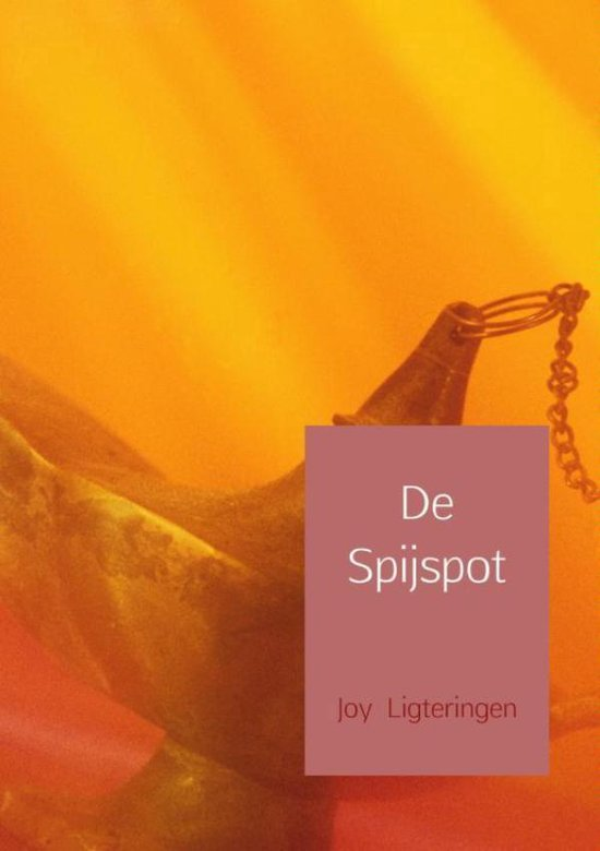 De spijspot - Joy Ligteringen | Fthsonline.com