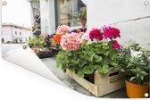 Kratten met geranium Tuinposter 90x60 cm - Tuindoek / Buitencanvas / Schilderijen voor buiten (tuin decoratie)
