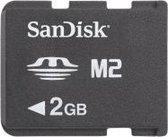 Sandisk SDMSM2M-002G-B35 2GB M2 flashgeheugen