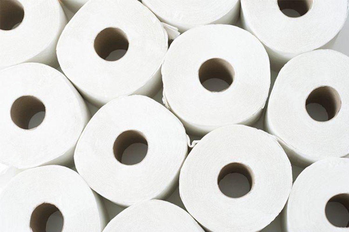 Toiletpapier 2-laags 96 rollen (16 x 6 rollen)