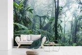 Fotobehang vinyl - Een mistig regenwoud in Costa Rica breedte 390 cm x hoogte 260 cm - Foto print op behang (in 7 formaten beschikbaar)