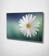 White Flower Canvas   70x100 cm