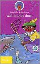 Wat is Piet dom
