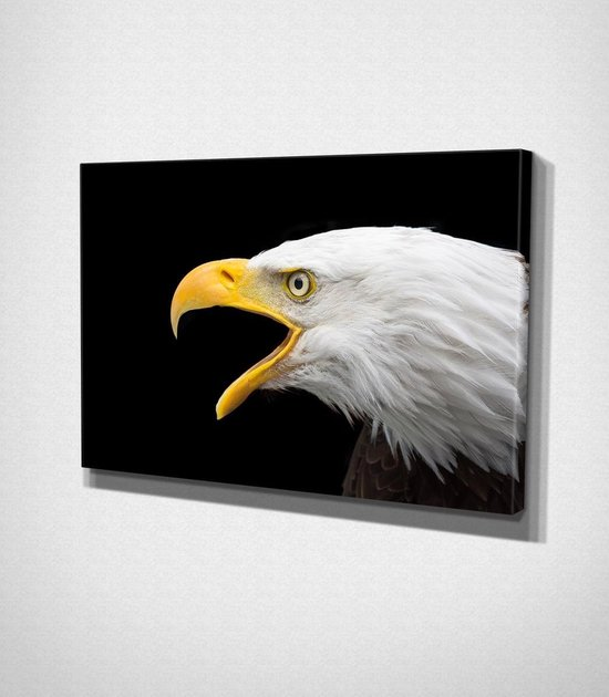 Eagle Canvas   80x120 cm