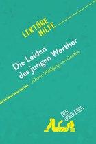 Die Leiden des jungen Werther von Johann Wolfgang von Goethe (Lektürehilfe)