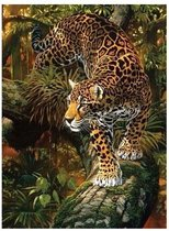 Hobbycave - Diamond Painting Pakket HQ - 40X30 CM - Vierkant - Dotz - Volwassenen - Luipaard