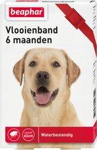 Beaphar Diagnos Vlooienband Hond Rood 6 Mnd
