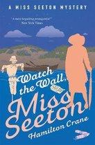 Watch the Wall, Miss Seeton