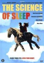 Science Of Sleep, The