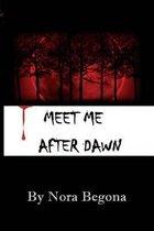 Meet Me After Dawn