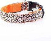 Pakketexpert LED Lichtgevende Hondenhalsband - Oranje - 43-60 cm