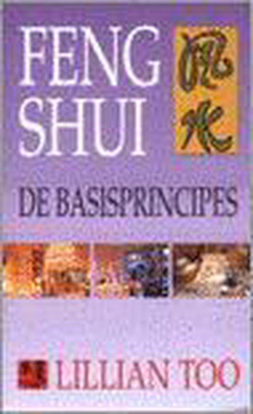 Feng shui. de basisprincipes - Lillian Too |