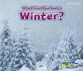 What Can You See in Winter? (Seasons)