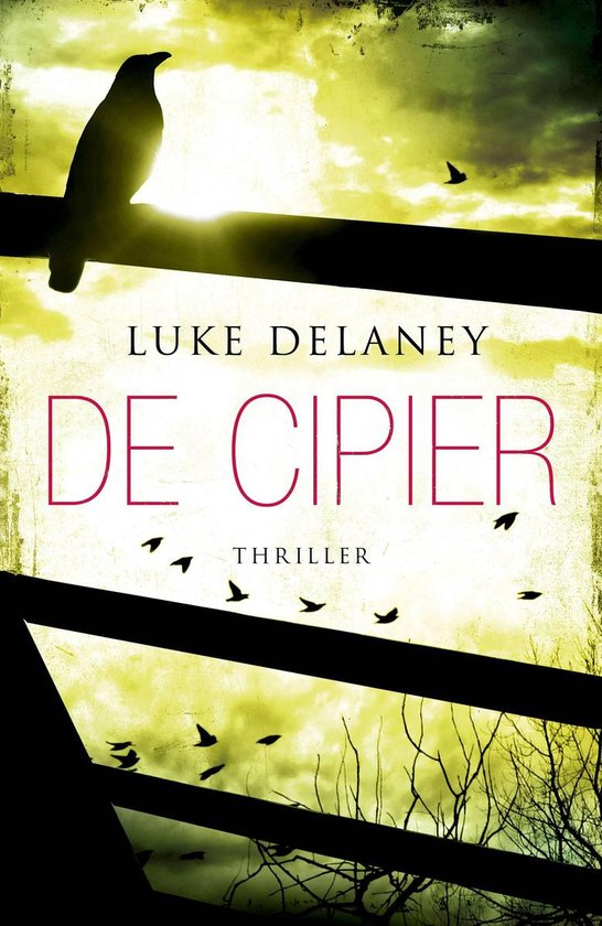 De cipier - Luke Delaney |