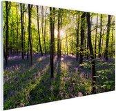 Paarse bloemen in het bos Glas 180x120 cm - Foto print op Glas (Plexiglas wanddecoratie) XXL / Groot formaat!
