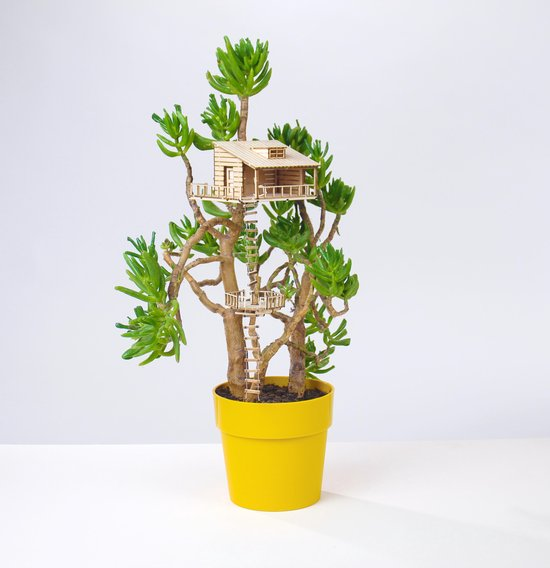 The Amazing Plant-hut   miniature treehouse