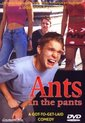 Ants In The Pants