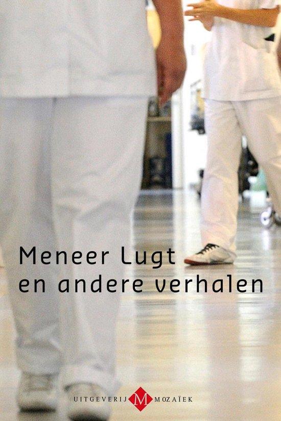 Meneer Lugt en andere verhalen - Hans Werkman  