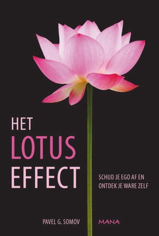 Het lotuseffect - Pavel Somov |