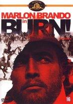 Burn (Queimada)