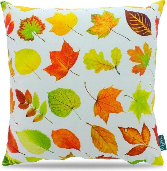 Intimo Autumn Light - Sierkussen - 45x45 - Multi colour