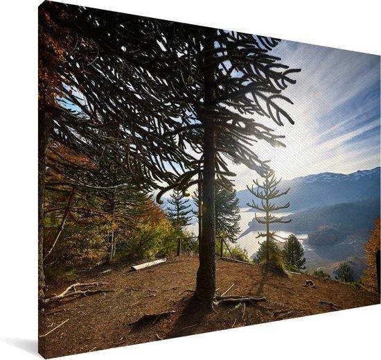 Zonsopkomst achter de slangenden Canvas 120x80 cm - Foto print op Canvas schilderij (Wanddecoratie woonkamer / slaapkamer)