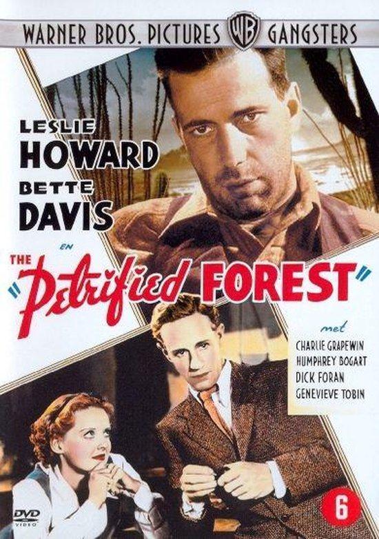 Cover van de film 'Petrified Forest'