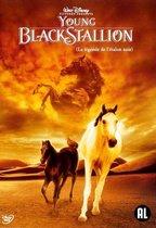 Afbeelding van Speelfilm - Young Black Stallion
