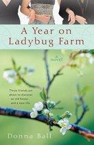A Year on Ladybug Farm