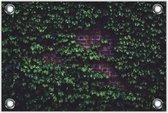 Tuinposter Gemetselde Muur met Planten 120x80cm- Foto op Tuinposter (wanddecoratie voor buiten en binnen)